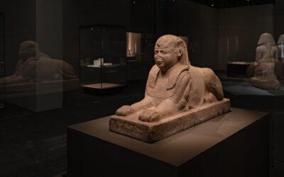 Vuoden 2020 erinomaiset #8: Museonäyttelyt