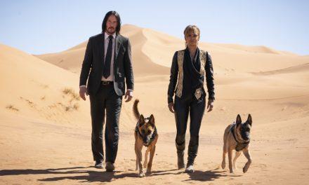 Koiranomistajan surrealistinen taisto jatkuu – John Wickin maailmassa kuka vain voi olla palkkamurhaaja
