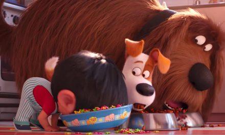 Vauhtia ja söpöilyä – Lemmikkien salainen elämä -animaation jatko-osassa ei ole aikaa tunnelmointiin