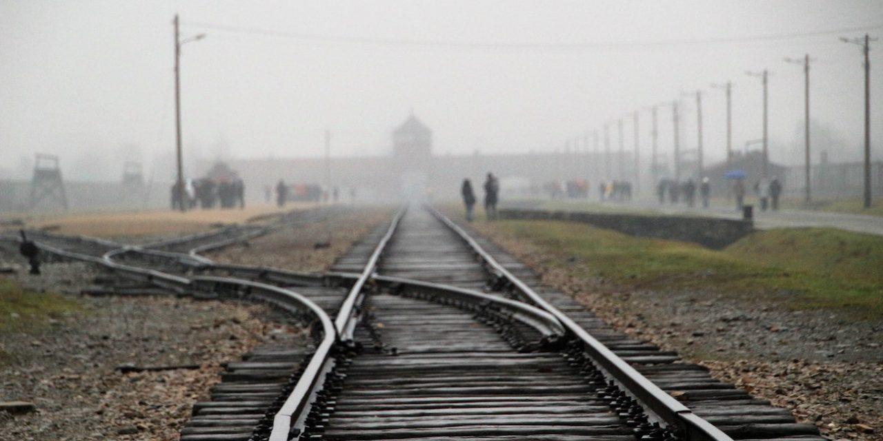 Auschwitzin haamu ei kadonnut minnekään