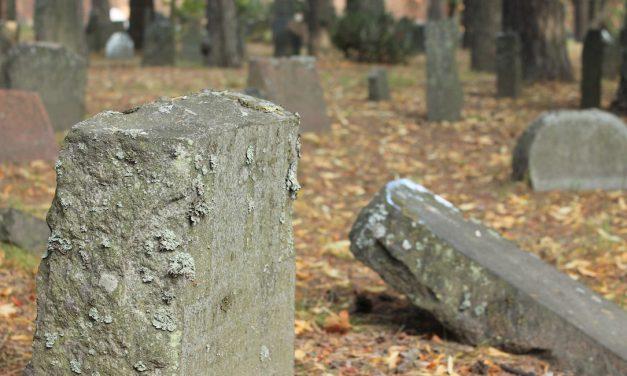 Palindromiruno 7: Hautuumaa