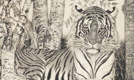 Galleriakatsaus: Tiikereitä koivumetsässä, vapauttavaa aistillisuutta ja tavallisuuden kosketusta
