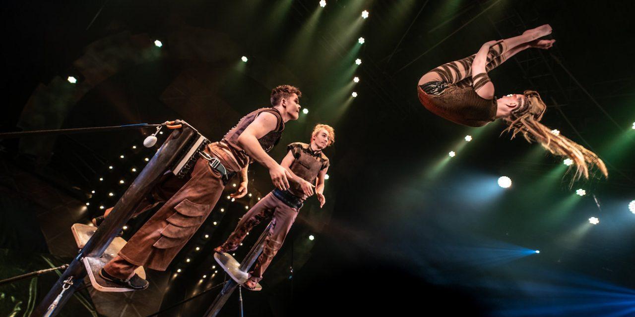 Sorin Sirkuksen joulushow huikaisee – Soriferian tuomalla valolla pärjää pahimpien kaamosviikkojen yli