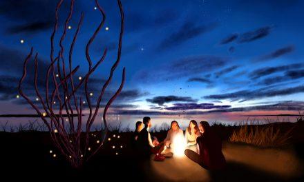 Mitä tapahtuu 11.–17.2.2020? Carmen, Apulanta, Vuoden luontokuvat Vapriikissa, Nahkatakkinen tyttö…