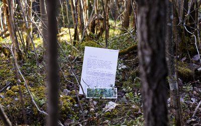 Kirjeitä kulkutaudin ajalta #4: Ritva Kovalainen