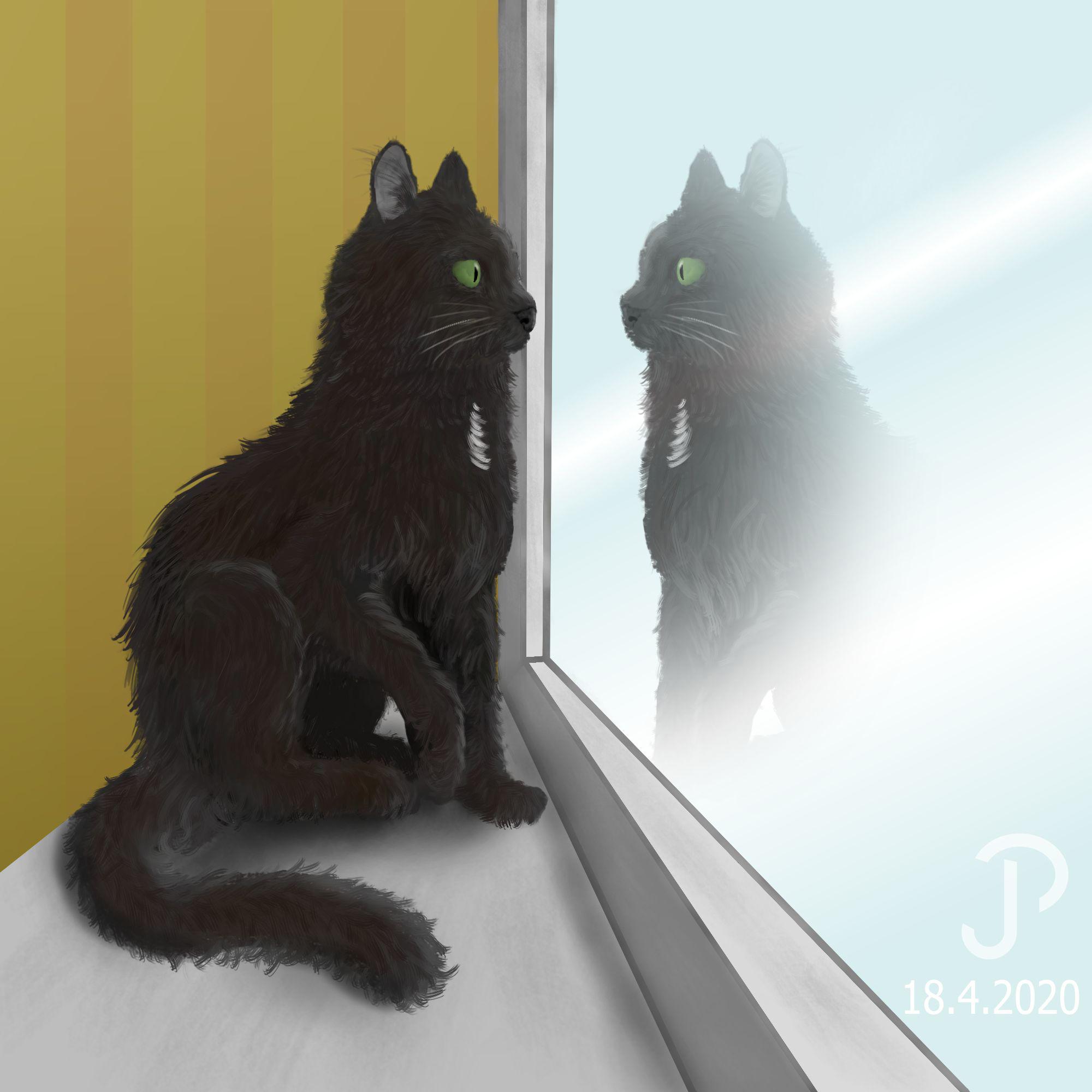 32. Janne Palokangas Kissa ja heijastus