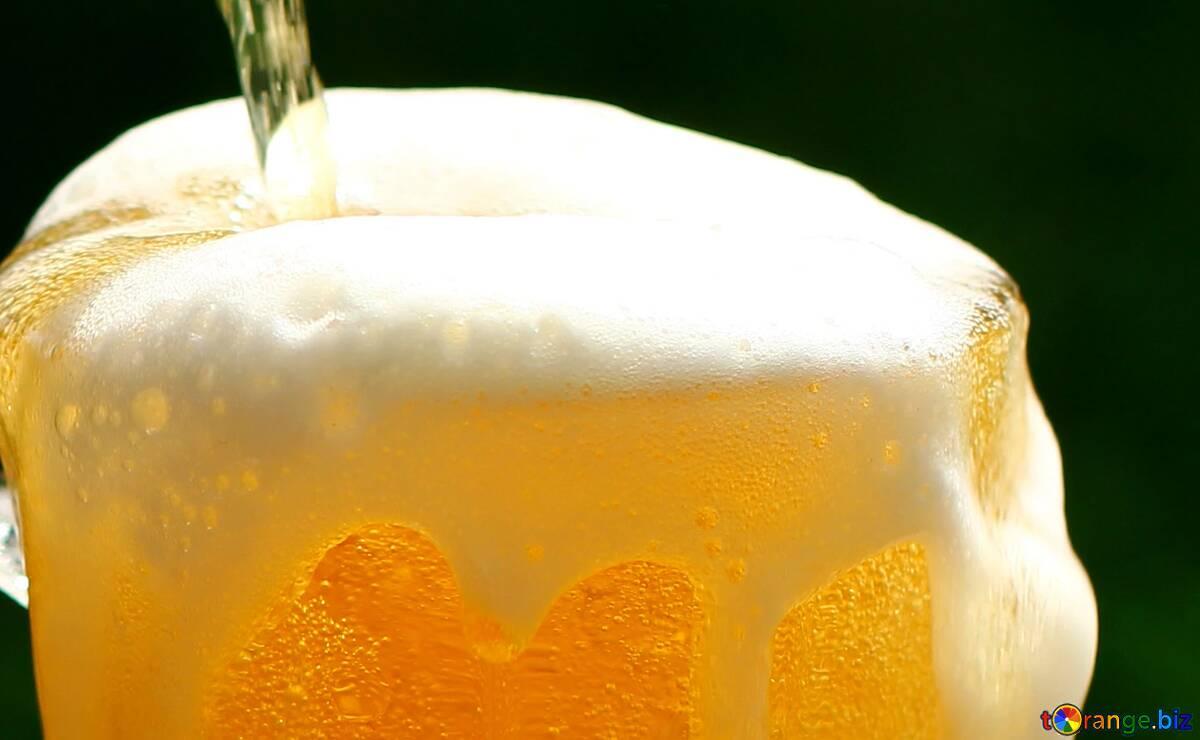 Cover. Beer kopio