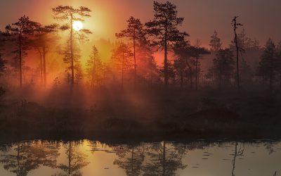 35 vierailemisen arvoista luonnonympäristöä, rakennusta ja retkikohdetta eri puolilta Suomea – Kulttuuritoimituksen vinkit