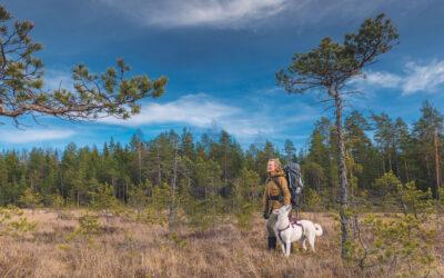 Nukkuu susien kanssa – Mia Takula pakahtuu susikohtaamisista, mutta ei pelkää