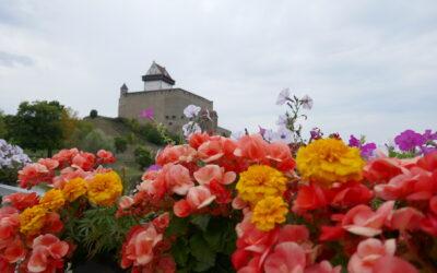 Parasta juuri nyt (6.7.2020): Itä-Viro – draamaa ja rosoa
