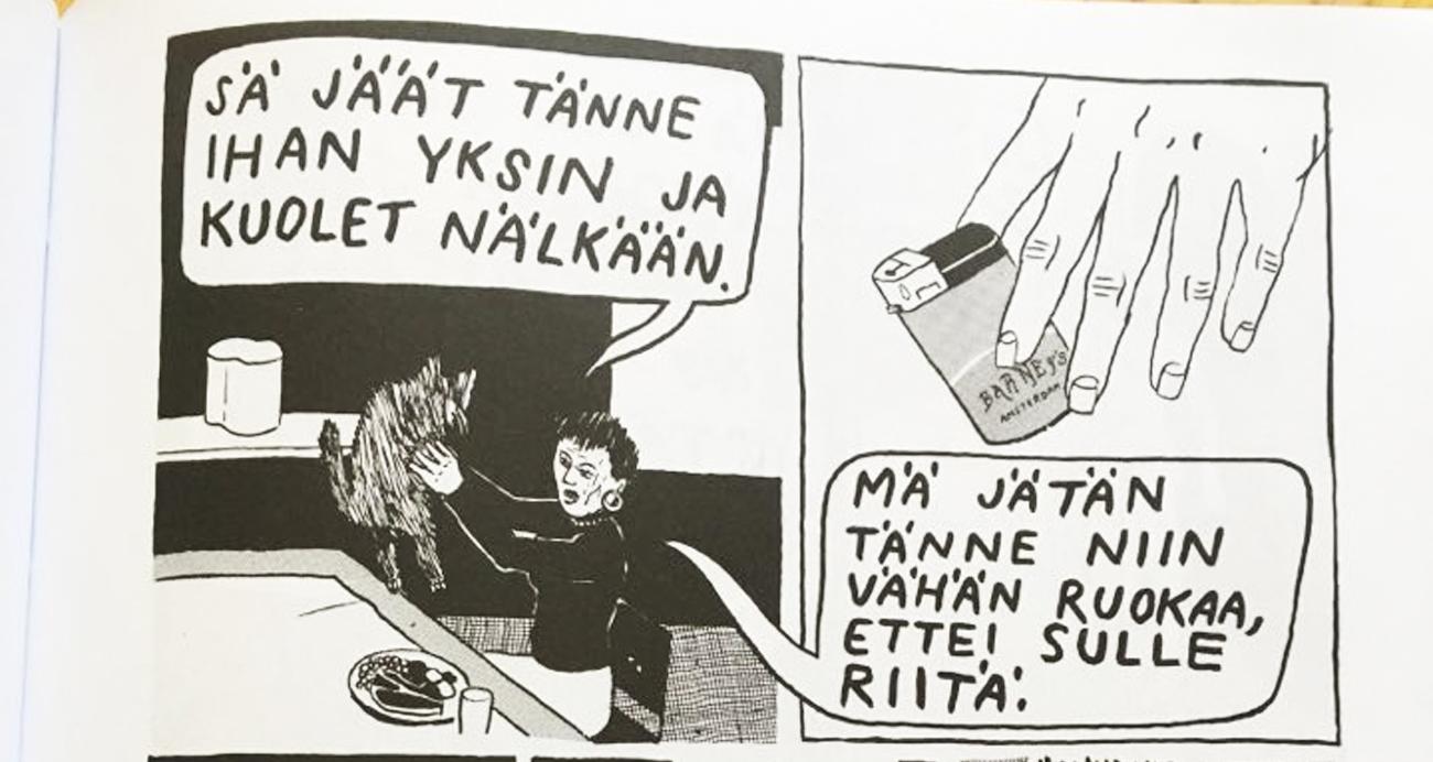 Sattumia Nissinen KUVA2