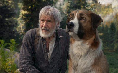 Sisäinen susi näyttää tien lellitylle koiralle Jack London -filmatisoinnissa Erämaan kutsu