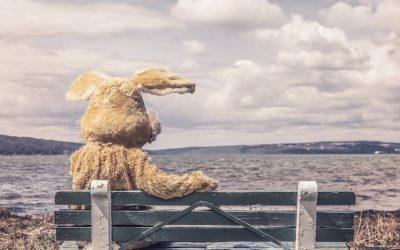 Takaisin luontoon – eläinhahmojen outo lohtu ja iäksi kadotettu (?) lapsuutemme